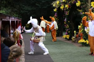 easter-bunny-event-essex-audley-end-miniature-railway
