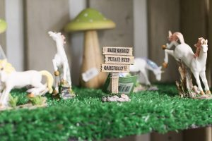 fairy-garden-accessories-audley-end-miniature-railway