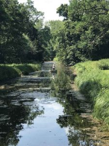 river-cam-boat-ride-audley-end-miniature-railway