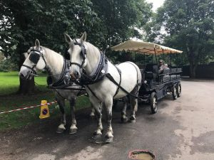 horse-rides-into-saffron-walden-from-audley-end-village