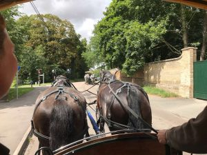 lionel-and-monty-pulling-horse-carriage-audley-end
