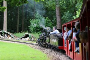 steam-train-rides-essex-audley-end-miniature-railway