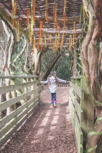 woodland-walk-enchanted-trail-essex-audley-end-miniature-railway family day out