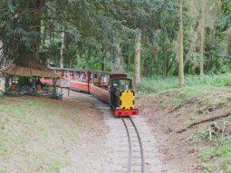 train rides for children in essex audley end miniature railway