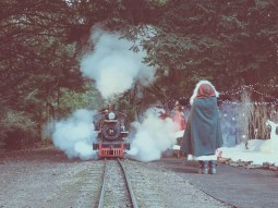 christmas-train-ride-essex-audley-end-miniature-railway