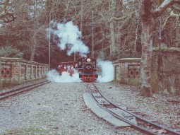 christmas-train-ride-to-visit-santa-audley-end-miniature-railway