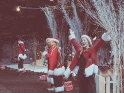 santa-special-audley-end-miniature-railway-christmas-elves