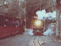 chirstmas-special-event-audley-end-miniature-railway-essex