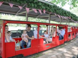 fathers-day-essex-day-out-audley-end-miniature-railway