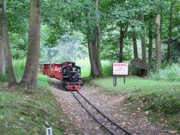 steam-engine-audley-end-minaiture-railway-summer-festival