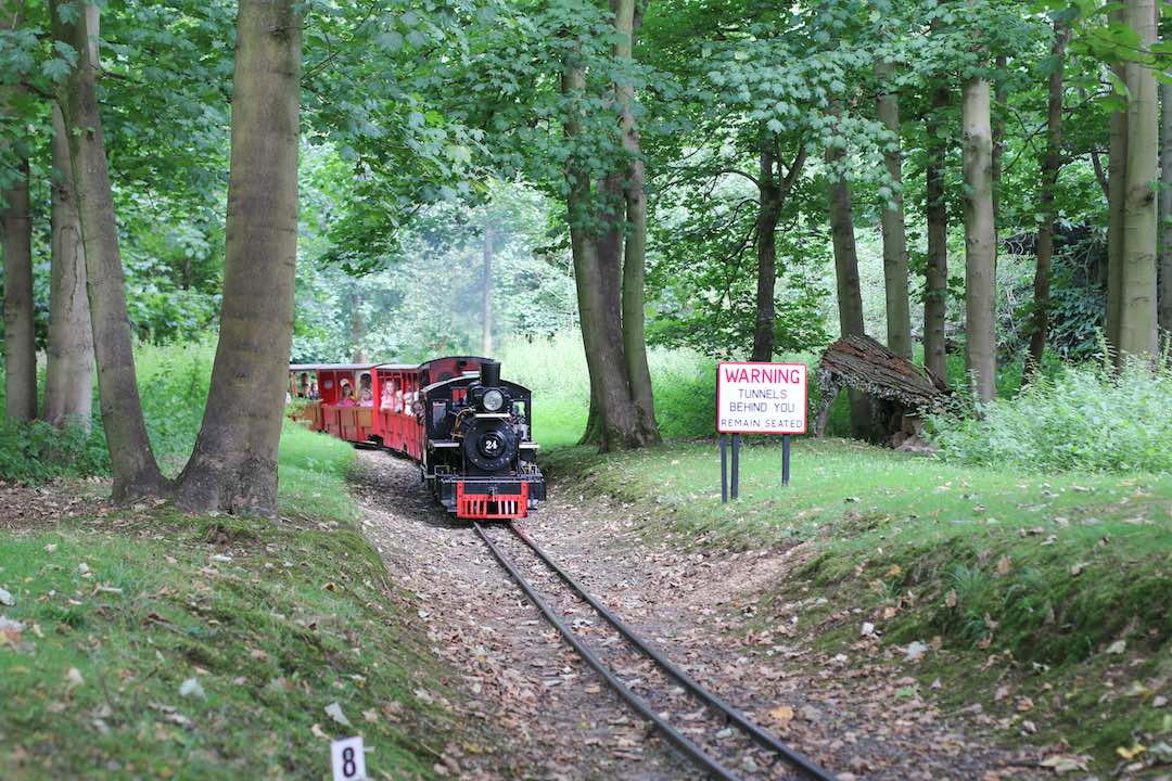 steam-engine-audley-end-minaiture-railway-summer-festival