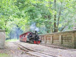 train-ride-summer-fairy-and-elf-festival-audley-end