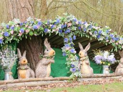family fun days out this easter audley end miniature railway