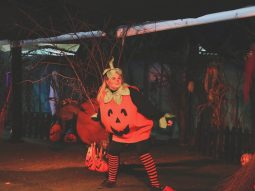 halloween event for families in cambridge audley end miniature railway