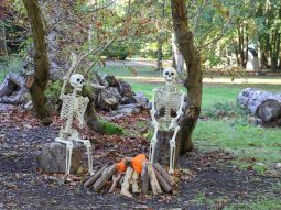 halloween event for families in cambridgeshire audley end miniature railway