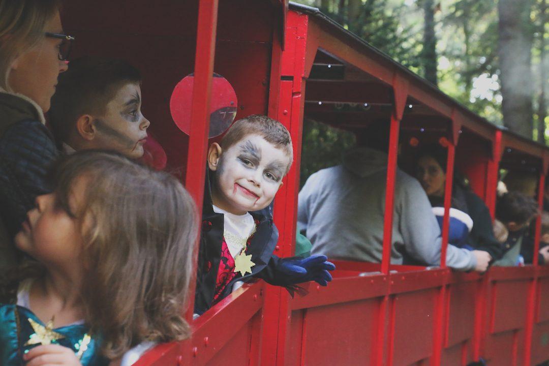 halloween train rides cambridge audley end miniature railway