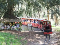 train rides at easter for families