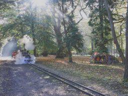 train rides for halloween in essex