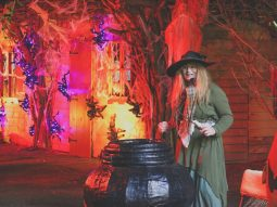 witches at the halloween event at audley end miniature railway