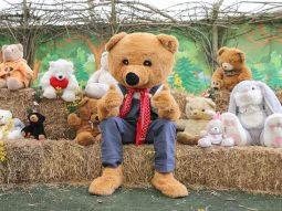 donate a bear day at the audley end miniature railway