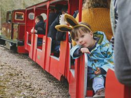 easter bunny train rides essex