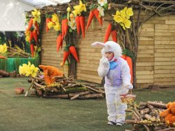easter events in cambridge audley end miniature railway