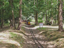 childrens train rides in essex audley end miniature railway