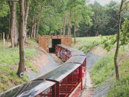 train rides for children in cambridge