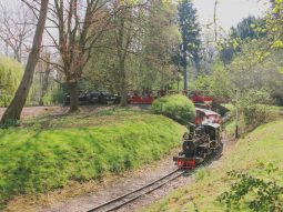 train rides in essex for families audley end miniature railway