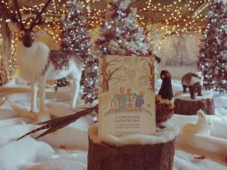 christmas story from the audley end miniature railway