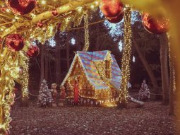 audley end christmas event for children