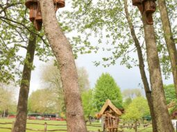 bird houses at the nature corner audley end
