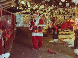 christmas events for families in cambridge