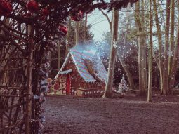 dolly the gingerbread house audley end miniature railway