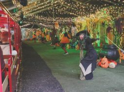 fun halloween event for families in essex