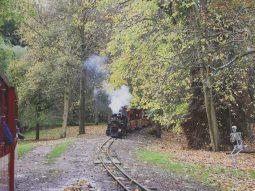 halloween train rides for children
