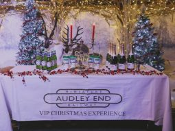magical christmas experience for families