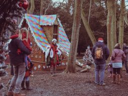 meet father christmas and his elves in essex