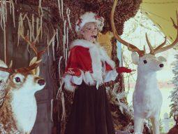 meet mother christmas in essex