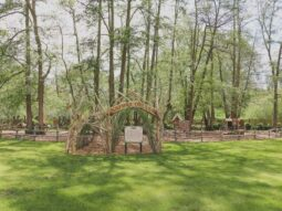 nature corner at the audley end miniature railway 2