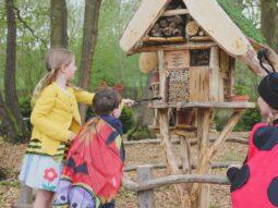 nature corner for children audley end miniature railway