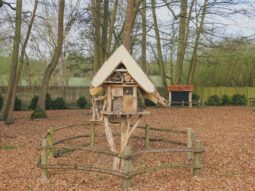 nature events for children in essex