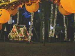 outdoor halloween events for children in cambridge