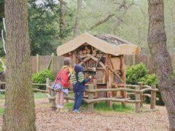 wildlife areas for children in essex