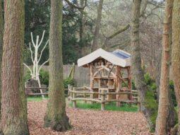 wildlife week event in essex audley end