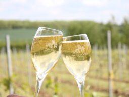 saffron grange sparkling wine
